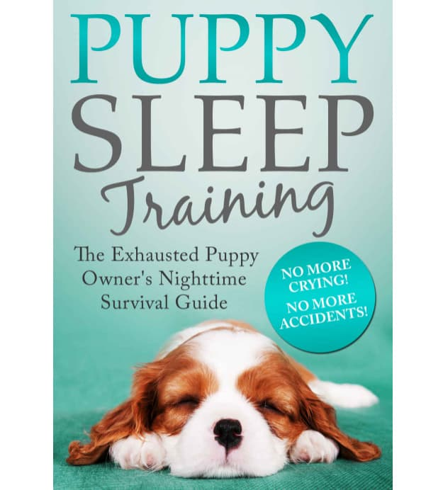 Puppy Sleep Training: The Exhausted Puppy Owner's Nighttime Survival Guide | Dog Training Books You Can Give This Christmas