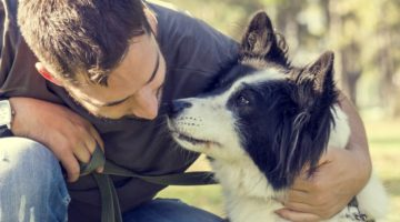 What Is Positive Dog Training?