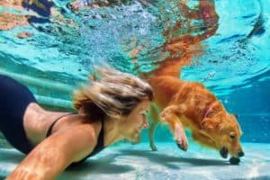 underwater-action-smiley-woman-play-fun-holistic pet health-ss