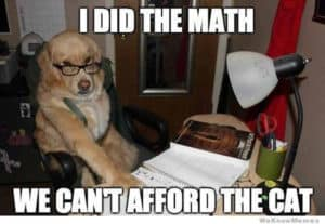 I Did the Math, We Can't Afford the Cat-dog memes to cheer you up-