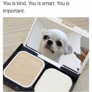 You is kind You is smart-dog memes to cheer you up-