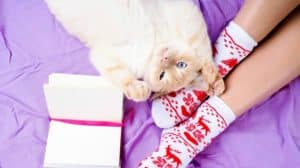 cute-photo-womans-feet-christmas-slippers-cool Christmas gift ideas-ss-FEATURE-