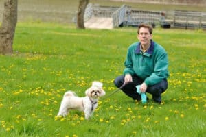 dog-outdoor-with-owner-dog potty training problems-