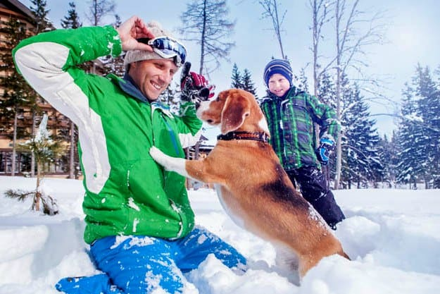 Risk Factors for Cold Weather | Cold Weather Pet Care Against Frostbite & Hypothermia
