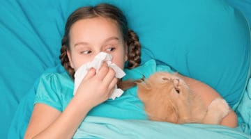 How To Get Rid Of Cat Allergies | Pet Care and Wellness