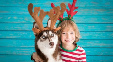 21 Best Gifts for Pet Lovers
