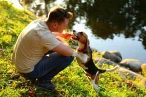 man-sit-on-squat-haunches-green-Choking Pets-ss