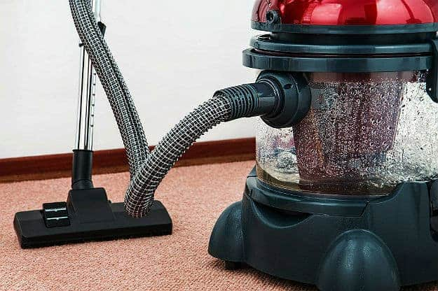 Step 5:?Vacuum Thoroughly | How To Get Rid Of Cat Allergies | Pet Care and Wellness